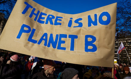 The Climate Movement Goes to War with Trump (In These Times)