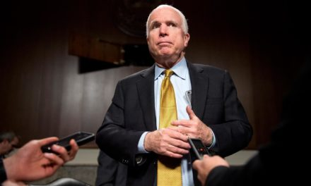 [Read at The Proud Liberal] Top Senate Republican John McCain Unleashes on Mitch McConnell, Calls Him 'A Stupid Idiot'